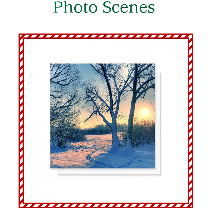 Photo Scene Christmas Cards